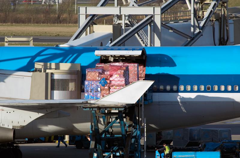 Professional Urgent Cargo
